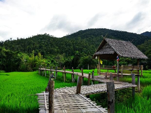 Nên đi Pai hay đi Chiang Mai nếu chỉ có 2 ngày?